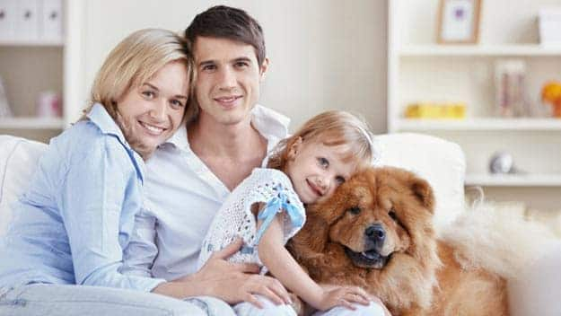 Wills & Trusts dog-young-family Direct Wills Bingley